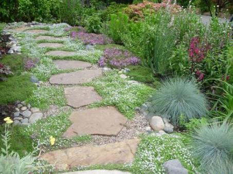Natures Pathway