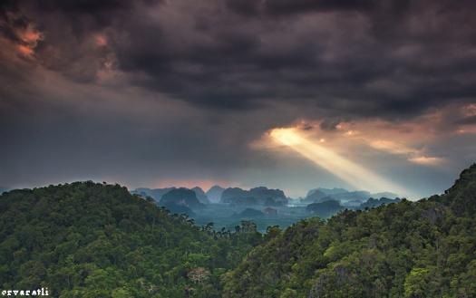 The Amazonian Landscape