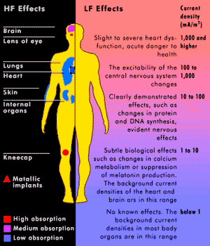 High Low Frequencies Effect on the body