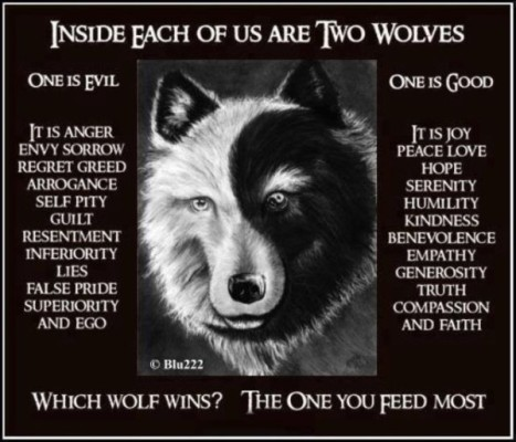 2_wolves_shadow_side
